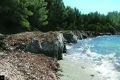 Posidonia beds, protection of Mediterranean beaches