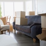 A Professional Mover Handles More Than a Big Move