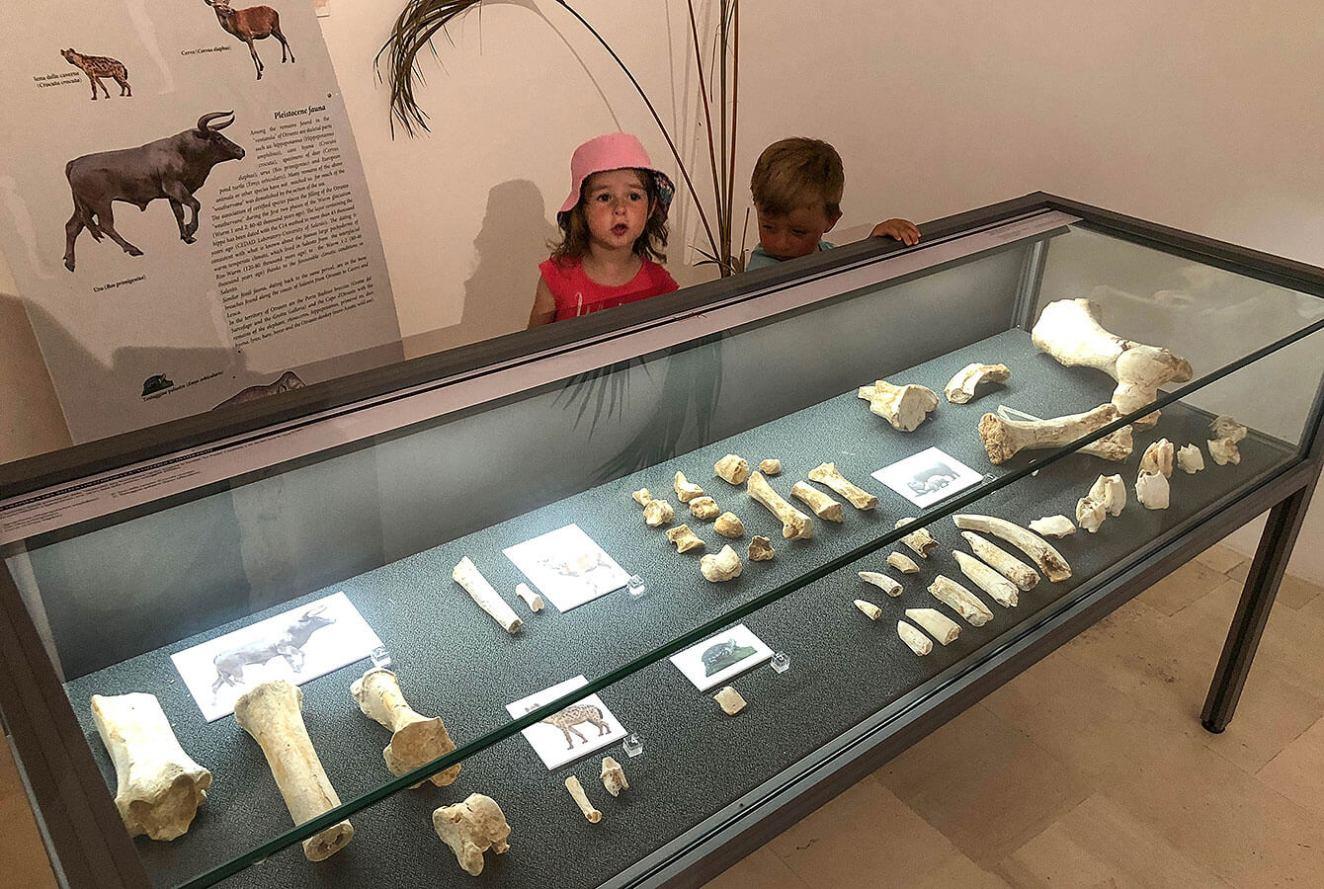 """Exhibition within the castel """"Places of Prehistory"""""""