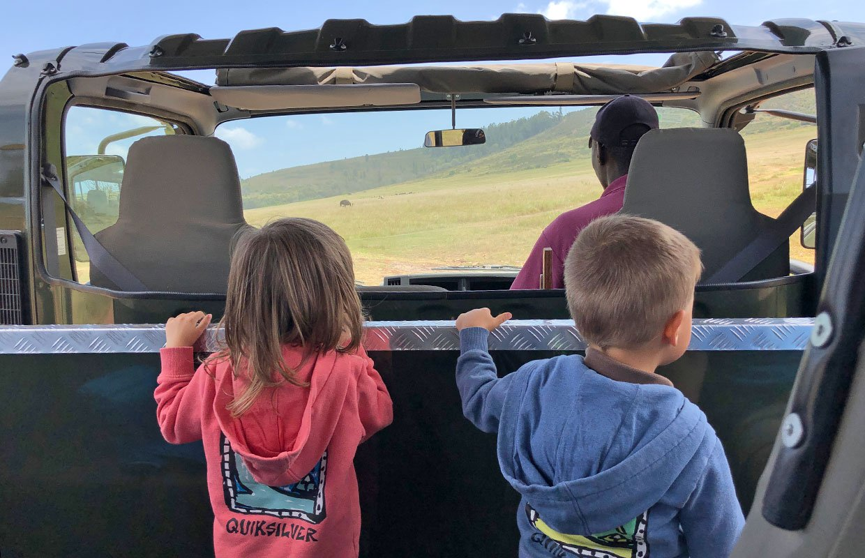 Guided game drive In Plettenberg Bay Reserve