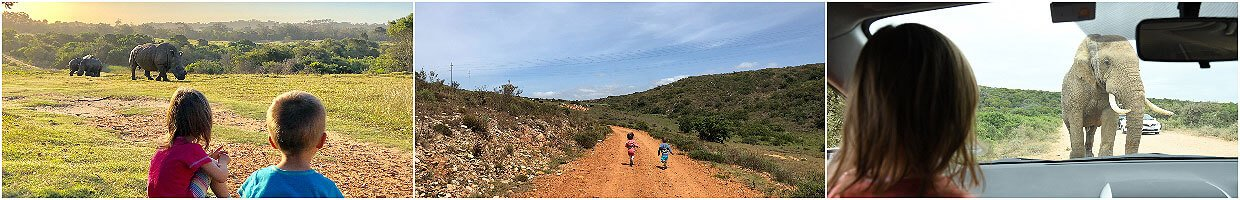 South Africa with kids