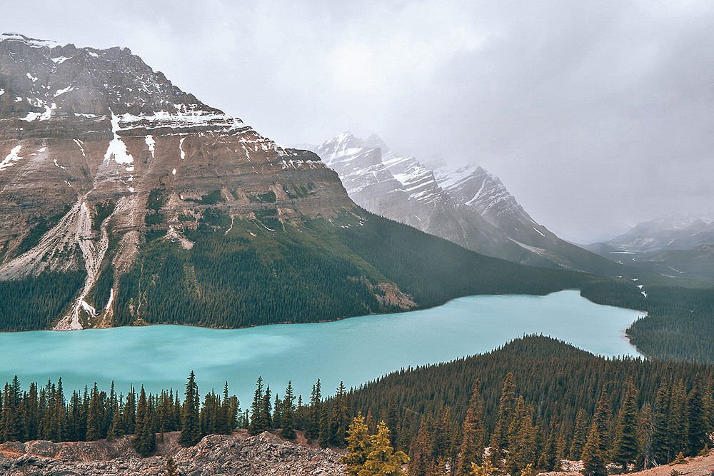 Lake Peyto look out point