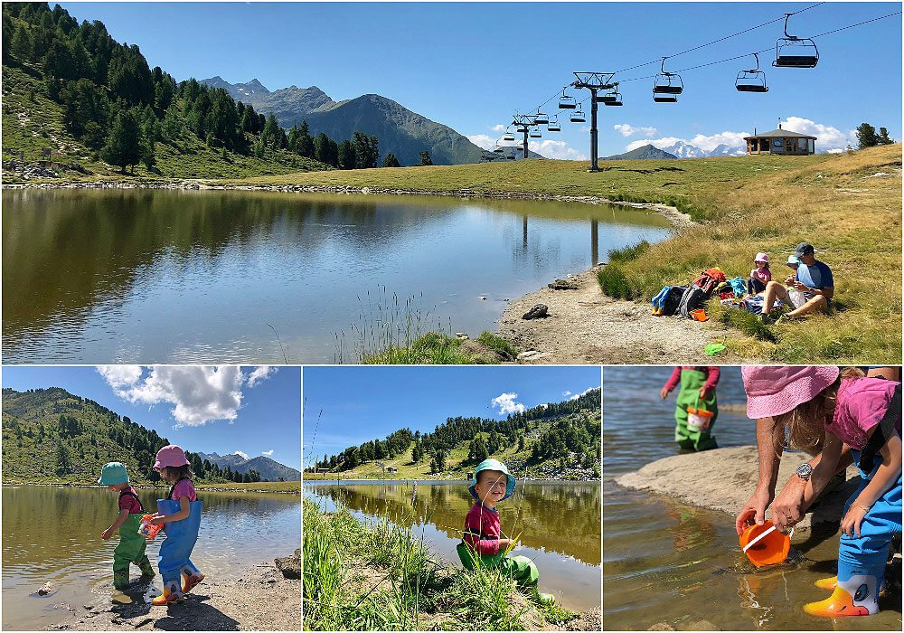 Seeking the Alpine Salamander at Tracouet Nendaz