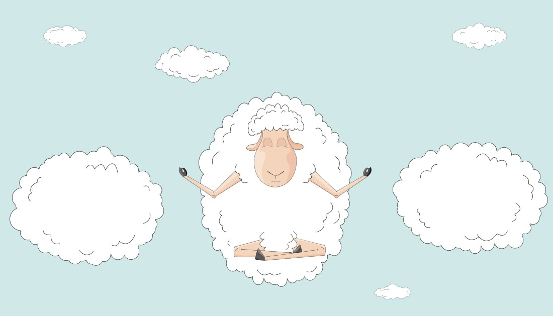 yoga sheep