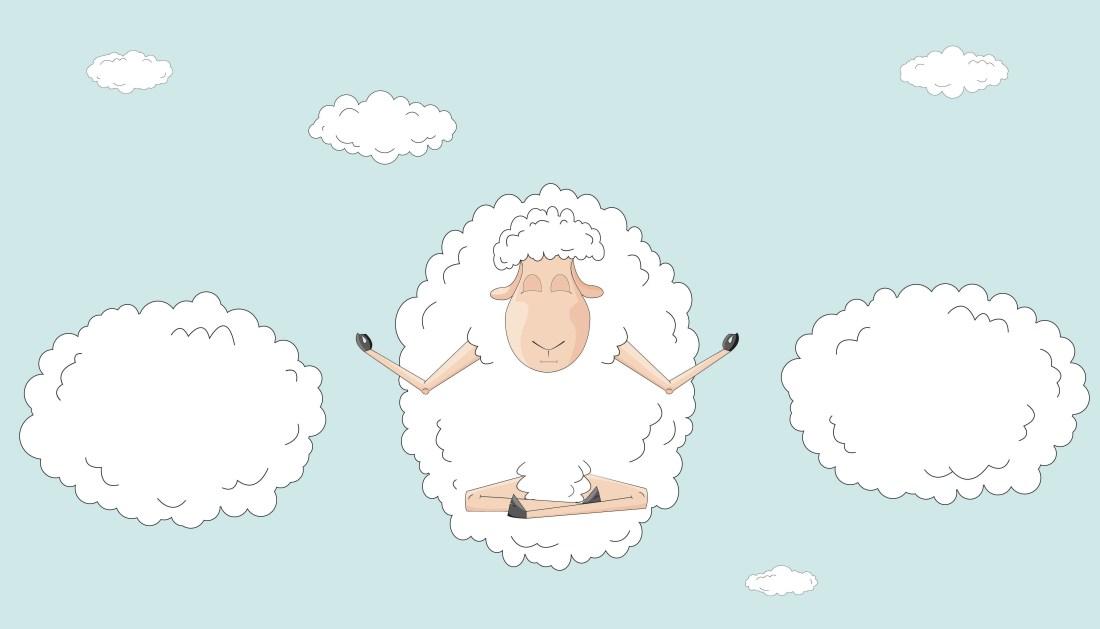 yoga sheep