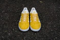 yellowweb-3