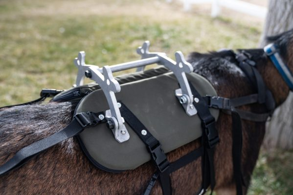 pack goat saddle