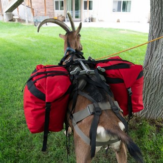Small Roll Top Pack Goat Panniers