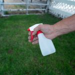 How to train a goat with a squirt bottle