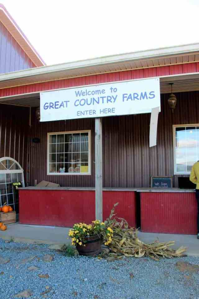 Great Country Farms Bluemont, Virginia admission
