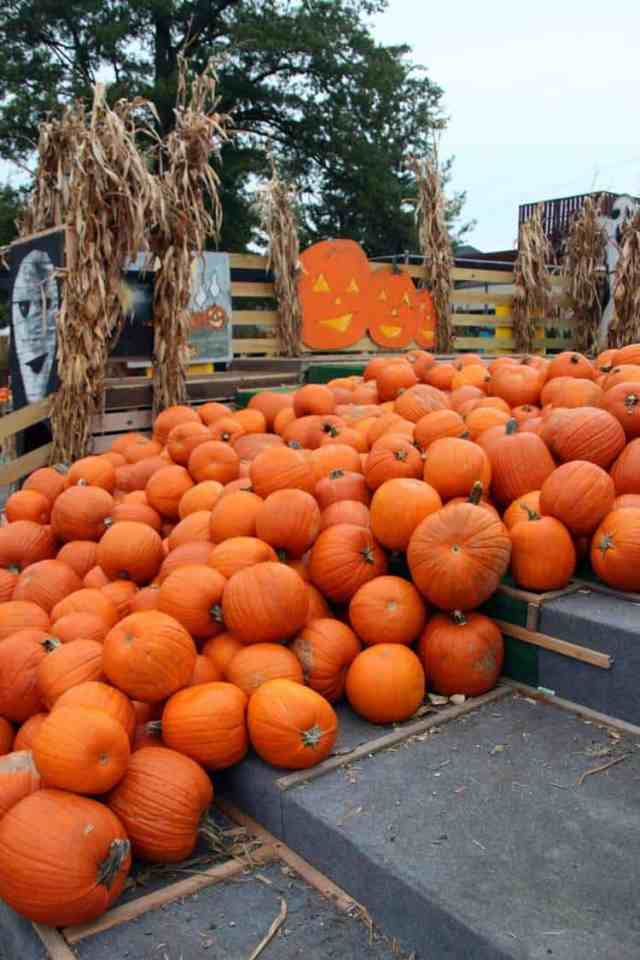 Nalls Produce pumpkins