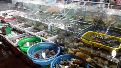 Fresh fish in Mui Ne