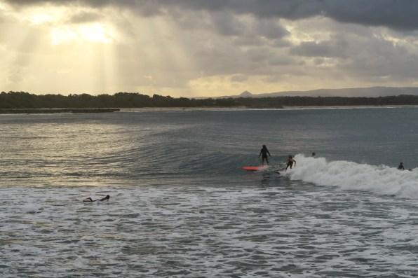 Surfing in Noosa