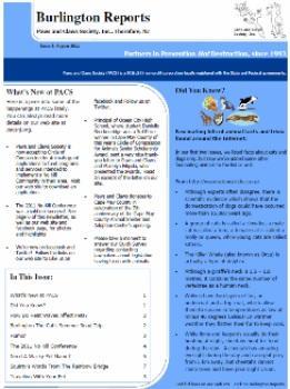 Burlington Reports - August 2011