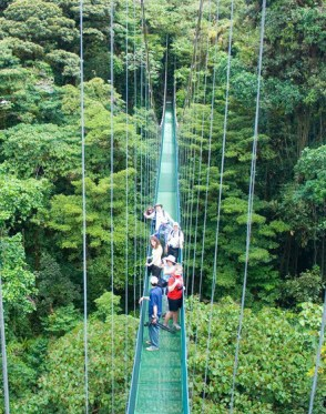 Monteverde-One-Day-Tour3.jpg