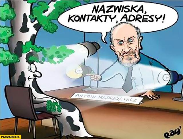 Macierewicz przesłuchuje brzozę Smoleńską rysunek nazwiska kontakty adresy  - Paczaizm.pl