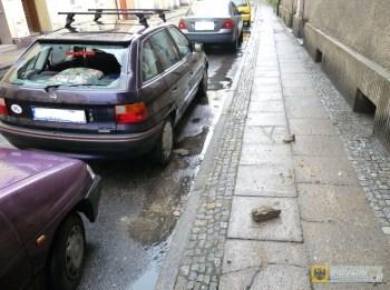 spadajacy_tynk_uszkodzil_auto_7