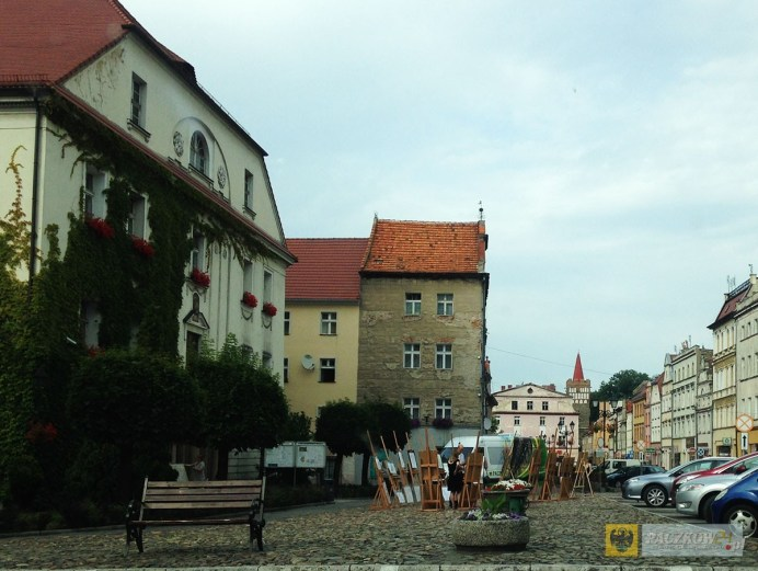 plener_politechnika_opolska_17_07_2015_15