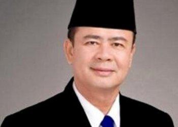 Wakil Gubernur Sumatera Barat H. Nasrul Abit (ist)