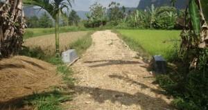 Salah satu ruas Jalan Usaha Tani di Kabupaten Agam. (fajar)