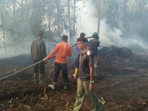 Kebakaran hutan dan lahan di wilayah Riau. (foto: Sutopo PN via twitter)