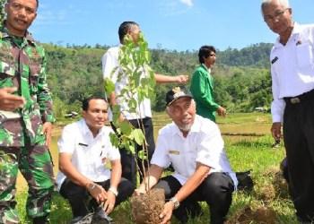 Penanaman pohon gaharu secara simbolis menandai dibukanya kegiatan pemberdayaan dan penyuluhan masyarakat tani oleh Fakultas Pertanian Unand di Sungkai, Lambung Bukik Kecamatan Pauh, Rabu (1/6). (ist)