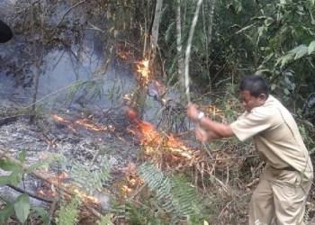 Kebakaran hutan di Agam. (fajar)