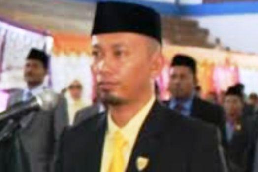 Ketua DPRD Pessel Dedi Rahmanto. (ist)