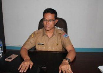 Kepala Dinas Kesehatan Kab.Kepulauan Mentawai, Lahmuddin Siregar. (ers)
