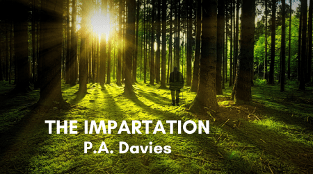 The Impartation Poem Image