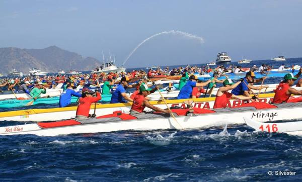 Catalina outrigger race. Photo: Chris Silvester