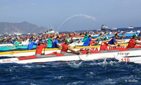 Catalina outrigger race. Photo: Chris Silvester