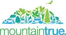 MountainTrue_logo_final-01 (2).png