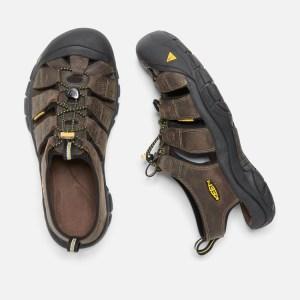 Keen Men's Newport Sandal | Bison | Top View