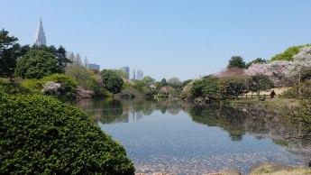 Japan: Shinkuku Park