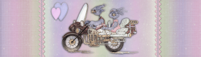 Bluebirds on a Motor Cycle