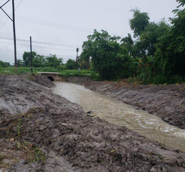 Trenches help improve stormwater runoff.