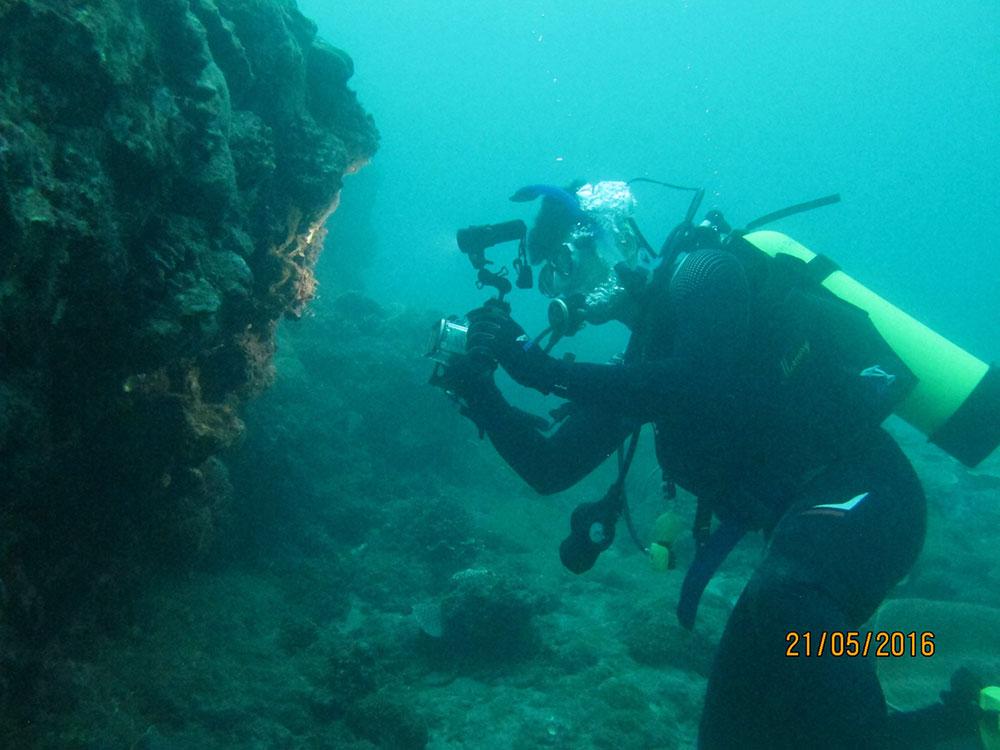 PADI 澎湖興仁潛水訓練中心-潛水考照 | 體驗潛水 | 馬公潛水 | 港澳潛水