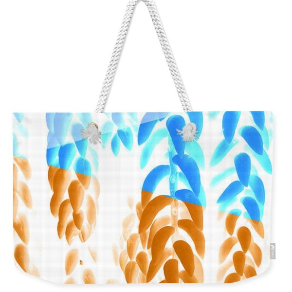 abstract Orange and blue hanging plants bag