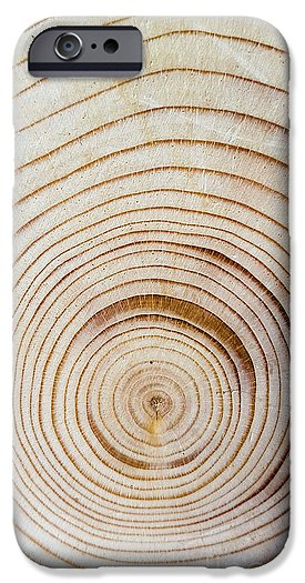 Concentric tree rings phone case
