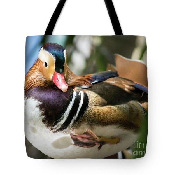 Mandarin duck raising one foot tote bag