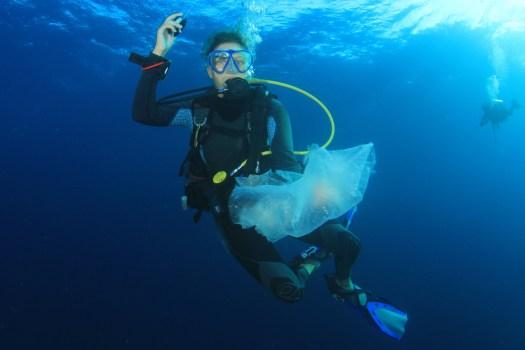 Underwater - Scuba Diver - Conservation - Ocean Health - Plastic