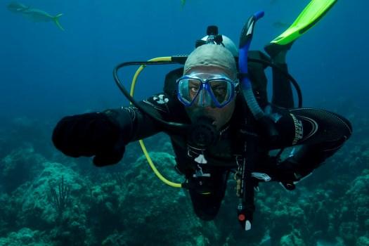 PADI Diver - Underwater Signals