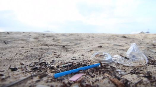 Marine Debris - Marine Litter - Beach