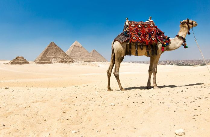 viajando a egipto