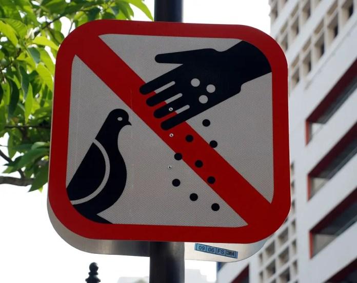 porque no se puede comer chicle en singapur