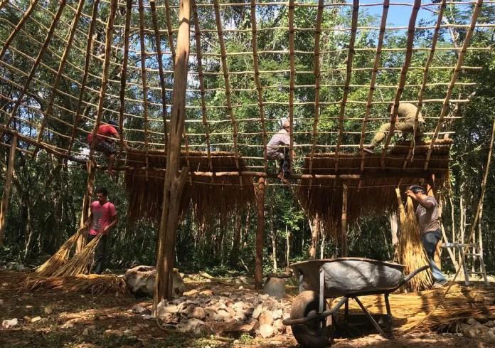 Voluntariado ecologico Mexico