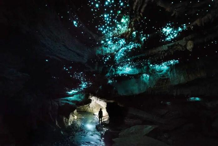 Waitomo Glowworm Caves, Nueva Zelanda
