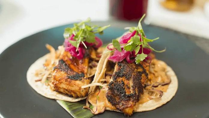 Qué comer y dónde comer en Isla Mujeres