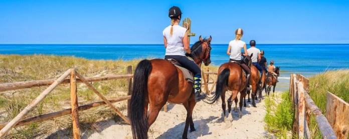 Paseo a caballo en Menorca. Precios, recorridos y consejos